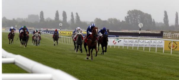 MEMO Horse Racing Pic